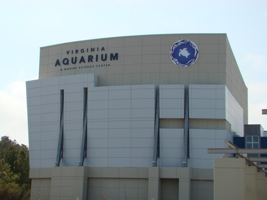 VA_Aquarium_March_2009__2_