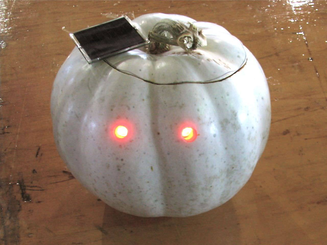 A solar pumpkin. By Lenore Edman, flickr user lenore-m