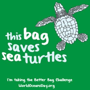 With kudos to the Houston Zoo, which provided the inspiration for what proved to be a very popular bag design!