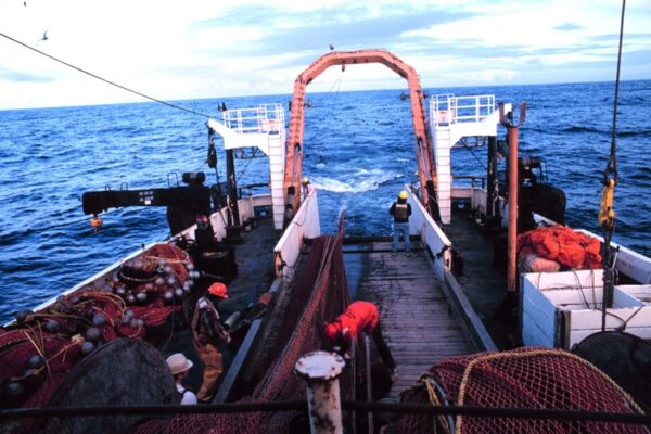 Healthy fish and sustainable fisheries
